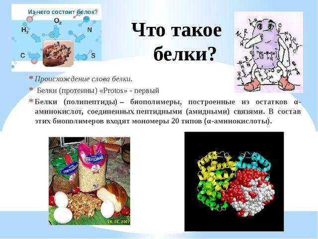 Что такое белки? Происхождение слова белки. Белки (протеины) «Protos» - первы...