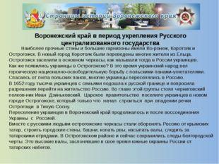 Воронеж - колыбель русского флота  В 1695 году царь ПетрIс большой армией