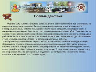 Оккупированные территории  Так, были уничтожены воронежский Дом пионеров, с