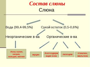 Состав слюны Слюна Вода (99,4-99,5%) Сухой остаток (0,5-0,6%) Неорганические
