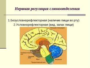 Нервная регуляция слюноотделения 1.Безусловнорефлекторная (наличие пищи во рт