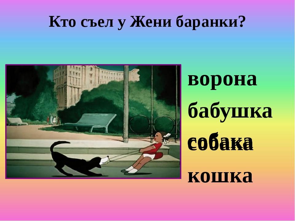Кто съел у Жени баранки? ворона бабушка собака кошка собака