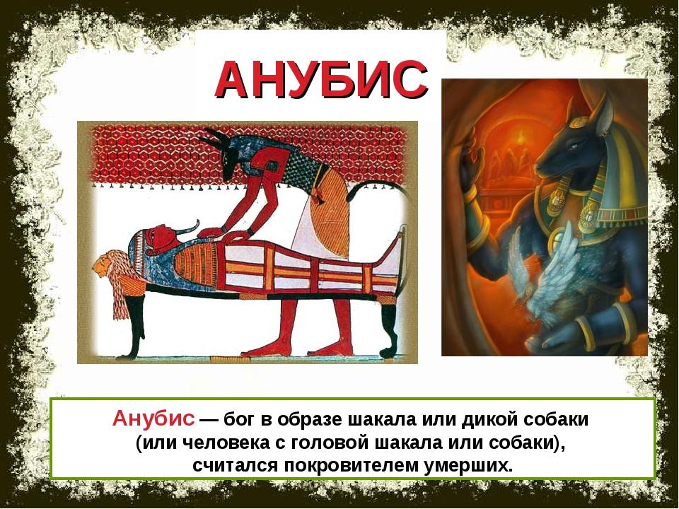 АНУБИС Анубис — бог в образе шакала или дикой собаки (или человека с головой...