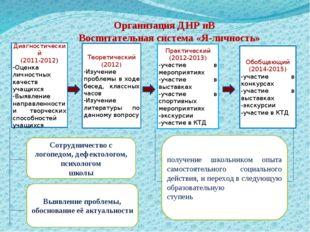 Организация ДНР иВ Воспитательная система «Я-личность» Диагностический (2011-