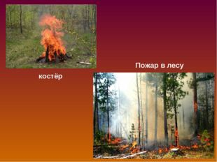 костёр Пожар в лесу
