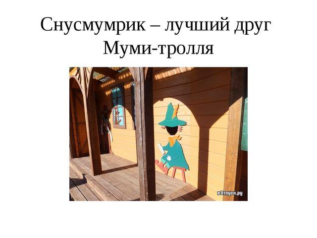Снусмумрик – лучший друг Муми-тролля