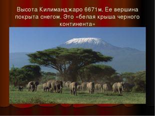 Высота Килиманджаро 6671м. Ее вершина покрыта снегом. Это «белая крыша черног