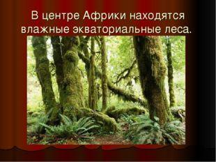 В центре Африки находятся влажные экваториальные леса.
