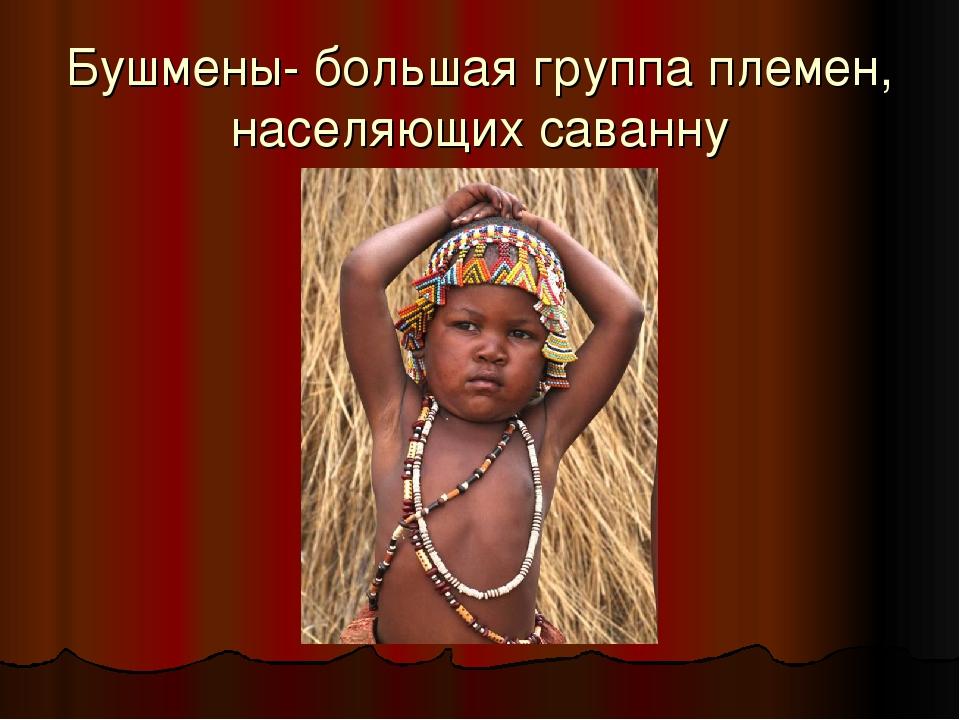 Бушмены- большая группа племен, населяющих саванну