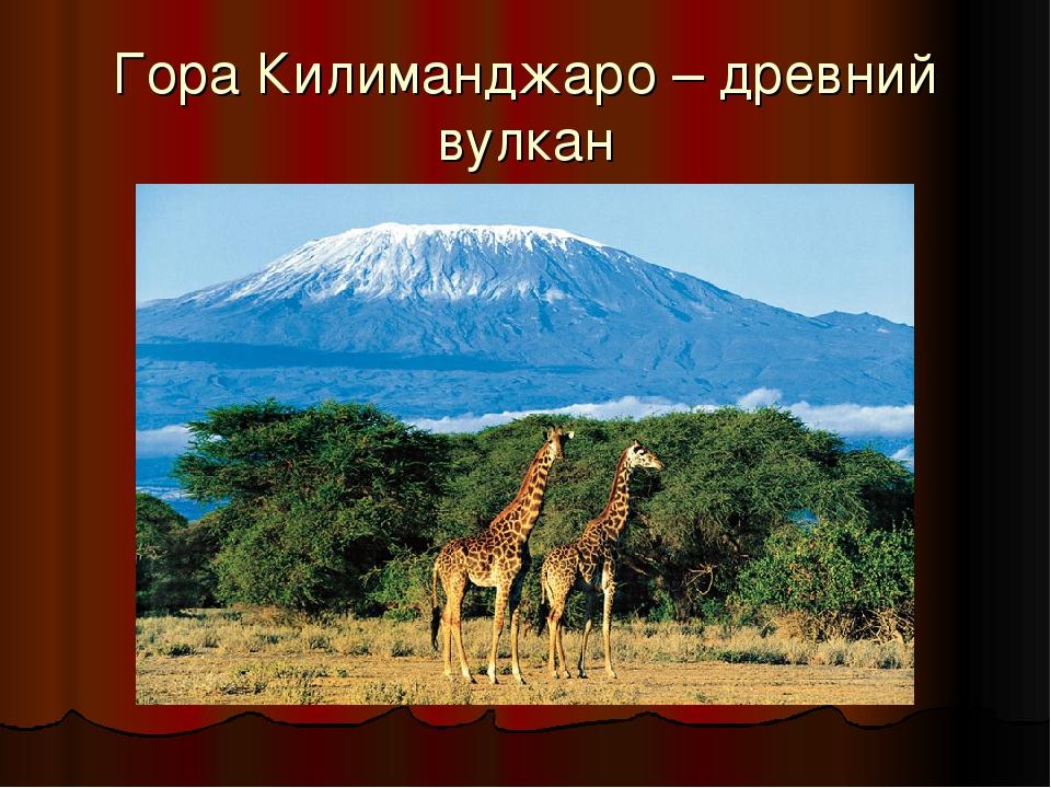 Гора Килиманджаро – древний вулкан