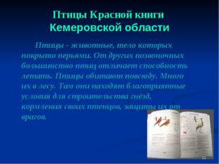 Птицы Красной книги Кемеровской области Птицы - животные, тело которых покр