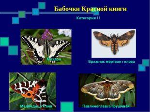 Бабочки Красной книги Категория I I Махаон Бражник мёртвая голова Павлиногла