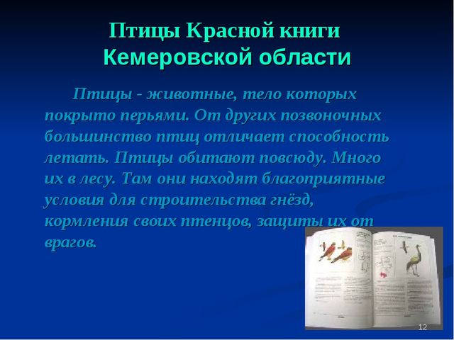 Птицы Красной книги Кемеровской области Птицы - животные, тело которых покр...
