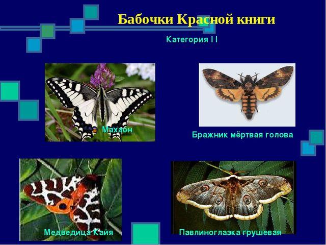 Бабочки Красной книги Категория I I Махаон Бражник мёртвая голова Павлиногла...