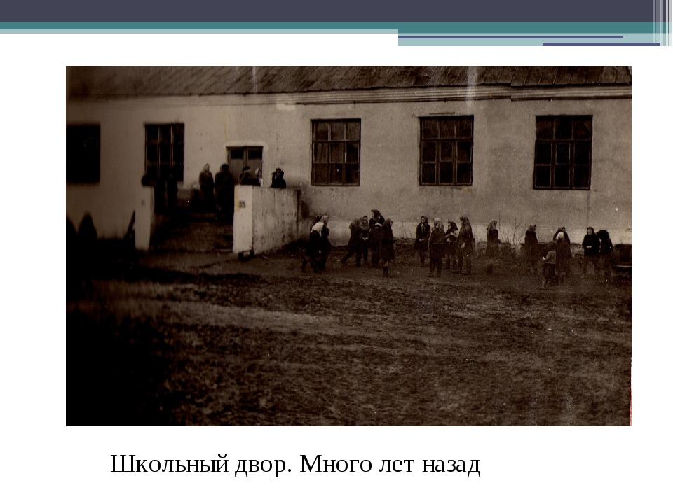 Школьный двор. Много лет назад