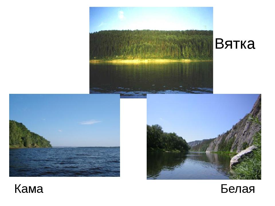 Вятка Кама Белая