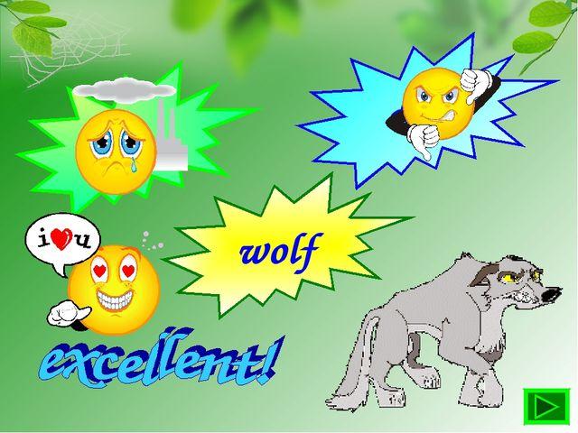 tiger dog wolf