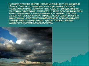 На горизонте можно заметить скопление мощных кучево-дождевых облаков. Они бы