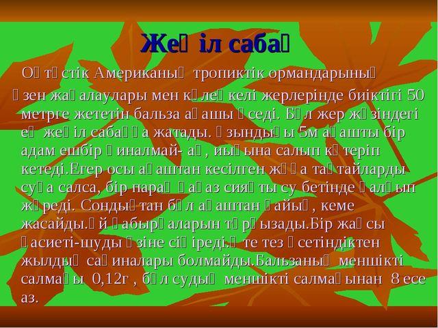 Жеңіл сабақ Оңтүстік Американың тропиктік ормандарының өзен жағалаулары мен к...