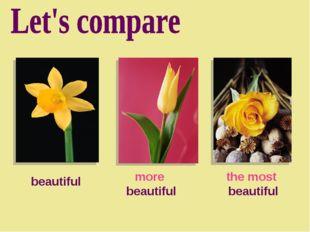 beautiful more beautiful the most beautiful