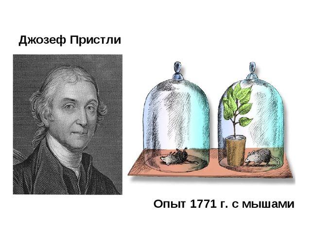Джозеф Пристли Опыт 1771 г. с мышами