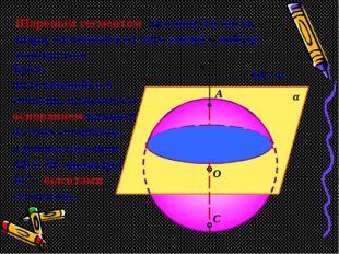 С О В α х АВ = h А Шаровым сегментом называется часть шара, отсекаемая от нег