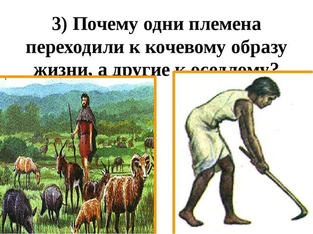3) Почему одни племена переходили к кочевому образу жизни, а другие к оседлому?