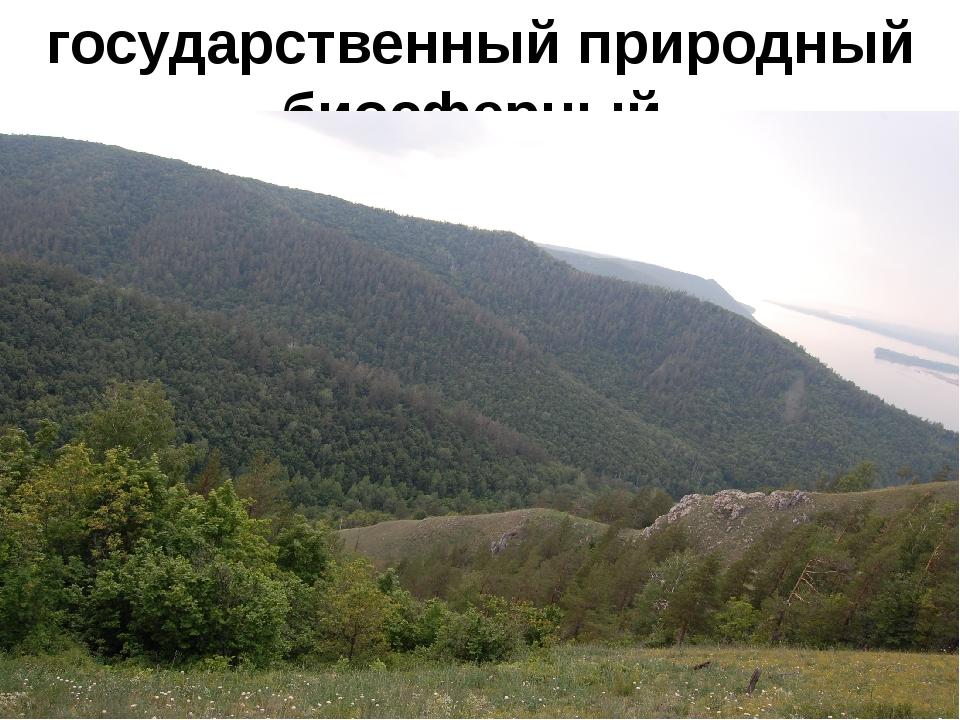 государственный природный биосферный заповедник им.И.И.Спрыгина.