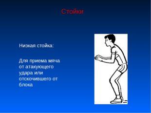 Стойки Низкая стойка: Для приема мяча от атакующего удара или отскочившего от