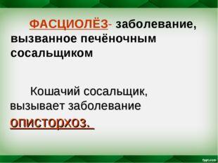 ФАСЦИОЛЁЗ- заболевание, вызванное печёночным сосальщиком Кошачий сосальщик,