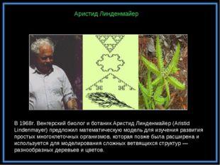 В 1968г. Венгерский биолог и ботаник Аристид Линденмайер (Aristid Lindenmayer