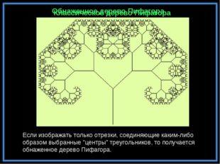 Обнаженное дерево Пифагора Классическое дерево Пифагора Если изображать тольк