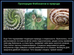 Еще Гете подчеркивал тенденцию природы к спиральности. Выяснилось, что в рас