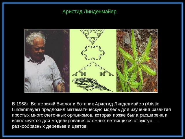 В 1968г. Венгерский биолог и ботаник Аристид Линденмайер (Aristid Lindenmayer...