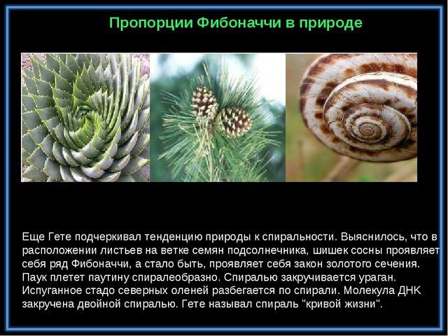 Еще Гете подчеркивал тенденцию природы к спиральности. Выяснилось, что в рас...