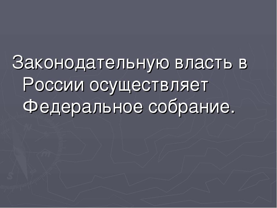 Законодательную власть в России осуществляет Федеральное собрание.