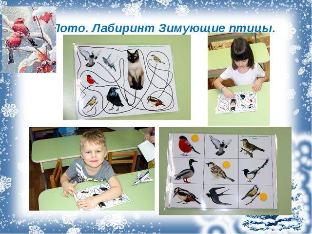 Лото. Лабиринт Зимующие птицы.