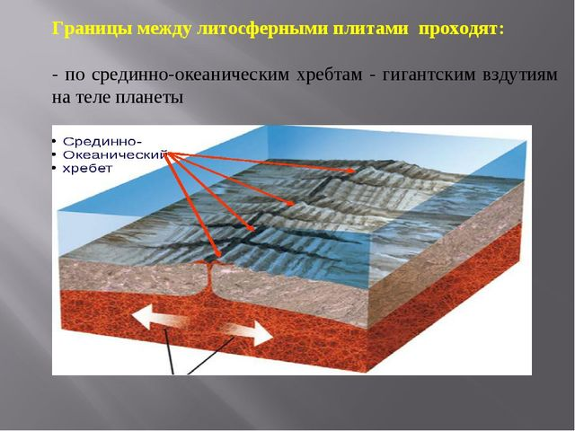 Границы между литосферными плитами проходят: - по срединно-океаническим хребт...