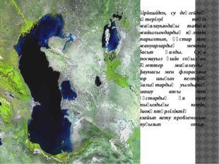 Біріншіден, су деңгейінің көтерілуі теңіз жағалауындағы табиғи жайылымдардың