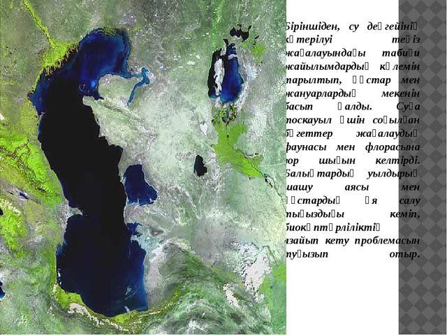 Біріншіден, су деңгейінің көтерілуі теңіз жағалауындағы табиғи жайылымдардың...