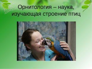 Орнитология – наука, изучающая строение птиц