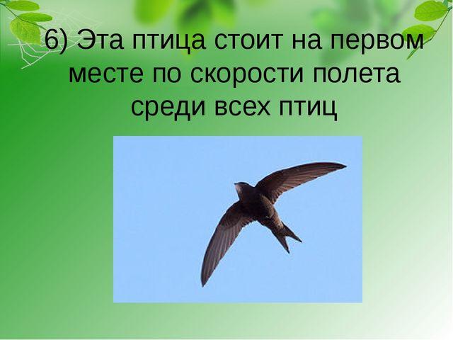 6) Эта птица стоит на первом месте по скорости полета среди всех птиц