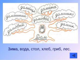 Зима, вода, стол, хлеб, гриб, лес.