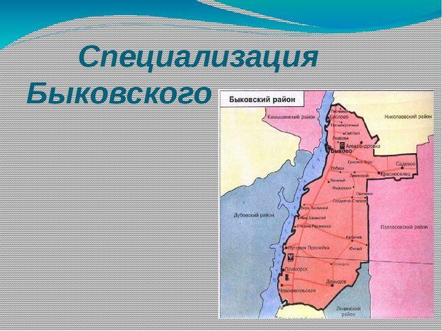 Специализация Быковского района