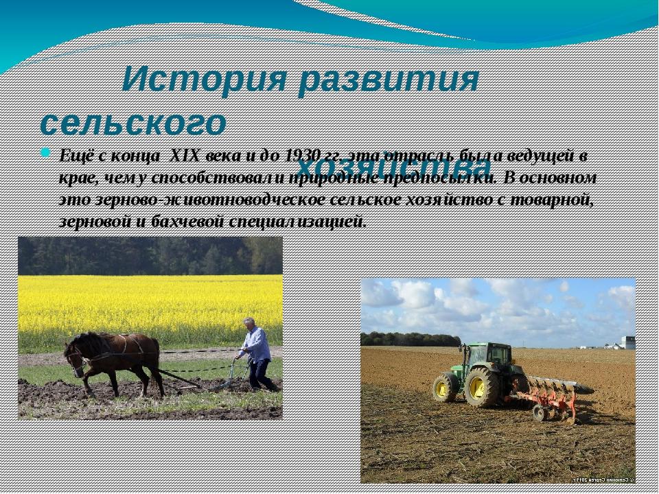 История развития сельского хозяйства Ещё с конца XIX века и до 1930 гг. эта...