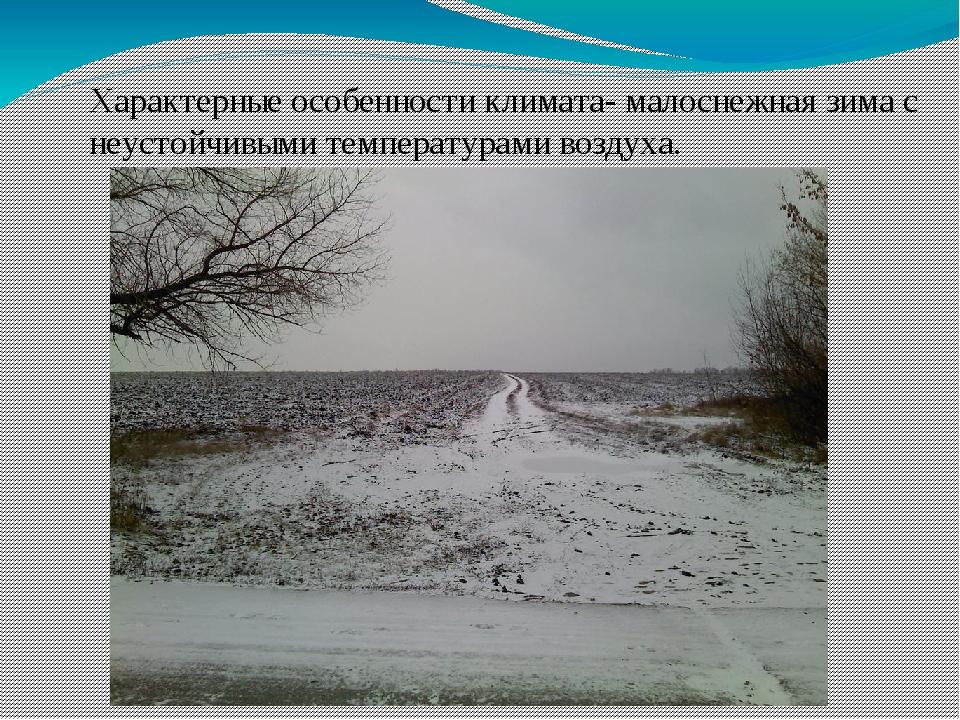 Характерные особенности климата- малоснежная зима с неустойчивыми температура...