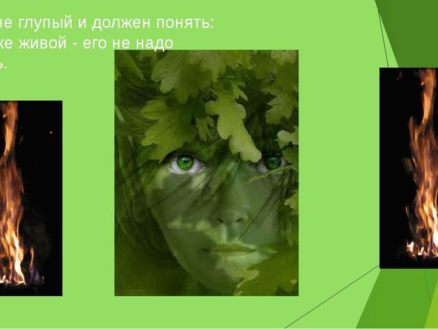 Ты же не глупый и должен понять: Лес тоже живой - его не надо сжигать.