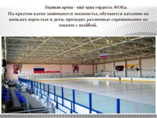 Ледовая арена- ещё одна гордость ФОКа. На крытом катке занимаются хоккеист