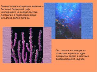 Замечательное природное явление – Большой барьерный риф, находящийся на север