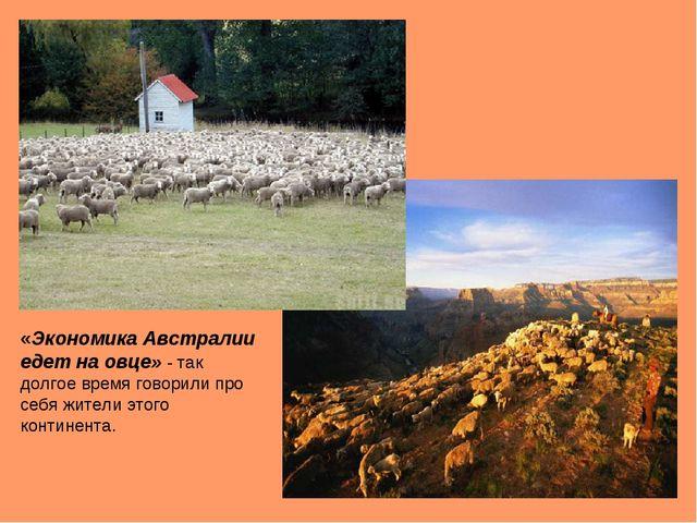 «Экономика Австралии едет на овце» - так долгое время говорили про себя жител...